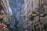 Store Signs in a City  Getreidegasse  Salzburg  Austria