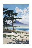 Pine Trees on the Beach with Mt Fuji in the Background  Japan