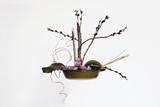 Ikebana  the Art of Flower Arrangement