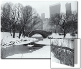 Central Park Bridge Snow 2