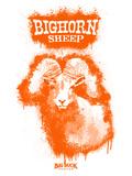 Big Horn Sheep Spray Paint Orange
