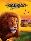 Big Buck Safari Lion Cabinet Art with Logo