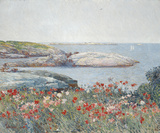 Poppies  Isles of Shoals 1891