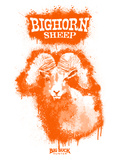 Big Horn Sheep Spray Paint Orange
