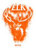 Elk Spray Paint Orange