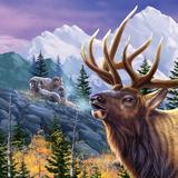 Big Buck Pro Open Season Cabinet Art