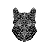 Mountain Lion Mesh