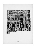 New Mexico Word Cloud 2