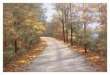 Walking in Fall