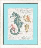 Centuria Seahorse