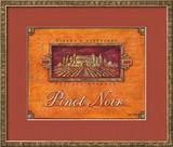 Pinot Vineyard