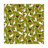 Beagle Scatter (Variant 3)