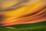 Palouse Abstract 2