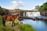 The Horse Near the Waterfall