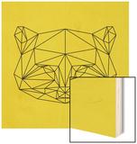 Yellow Raccoon Polygon