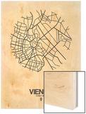 Vienna Street Map White