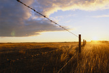 Sunrise over a Remote Barbed-Wire Fence
