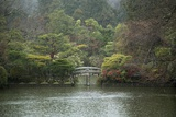 A Traditional Wooden Footbridge in a Rainstorm at Ryoanji Temple