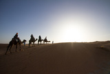 Tourists Enjoy a Camel Ride During Sunset in Morocco Berber Camel Boy in the Sahara  Morocco
