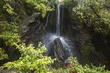 A Small Waterfall  Part of the Gardens at Kinkaku-Ji Temple