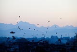 Kathmandu  Nepal: Birds Take Flight at Sunrise with the Himal Ganesh as a Backdrop