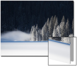 A Low-Lying Mist Hovers over a Snowy Landscape