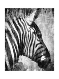 African Animals II - Grey