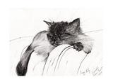 Sleepy Baby  2013