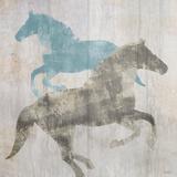 Equine I