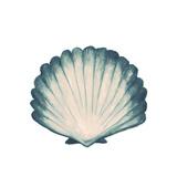 Coastal Icon V (blue)