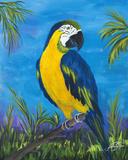 Island Birds II