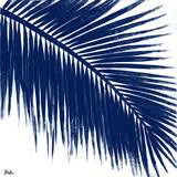 Indigo Barú Palm II