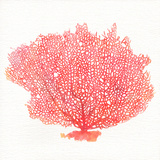 Watercolor Coral I
