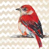 Cheveron Baby Red Bird II