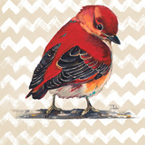 Chevron Baby Red Bird I Reproduction d'art par Patricia Pinto