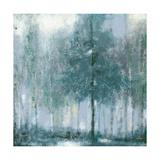 Somber Forest 2