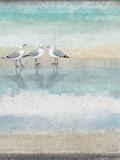 Sea Glass Shore 1 Reproduction d'art par Norman Wyatt Jr.