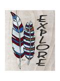 Feather Print Explore