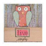 Simple Owl Square