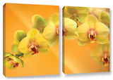 Yellow Phalaenopsis  2 Piece Gallery-Wrapped Canvas Set