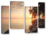 Renewal  4 Piece Gallery-Wrapped Canvas Staggered Set
