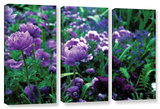 Poppies In Monets  3 Piece Gallery-Wrapped Canvas Set