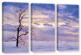 Solitude  3 Piece Gallery-Wrapped Canvas Set