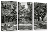 Live Oak Avenue Ii  3 Piece Gallery-Wrapped Canvas Set