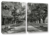 Live Oak Avenue Ii  2 Piece Gallery-Wrapped Canvas Set