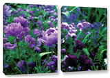 Poppies In Monets  2 Piece Gallery-Wrapped Canvas Set
