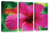 Maui Pink Hibiscus  3 Piece Gallery-Wrapped Canvas Set