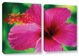 Maui Pink Hibiscus  2 Piece Gallery-Wrapped Canvas Set