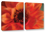 Fiery Dahila  2 Piece Gallery-Wrapped Canvas Set