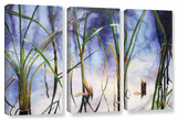 Mystic Pond  3 Piece Gallery-Wrapped Canvas Set
